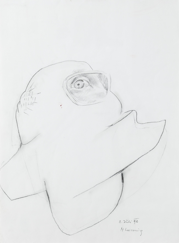 Maria Lassnig, Auge