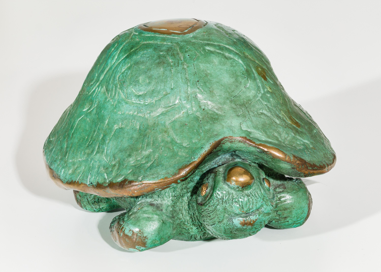 Gottfried Kumpf, Die Schildkröte Samson