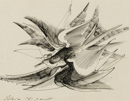 Anton Lehmden, Vogelflug