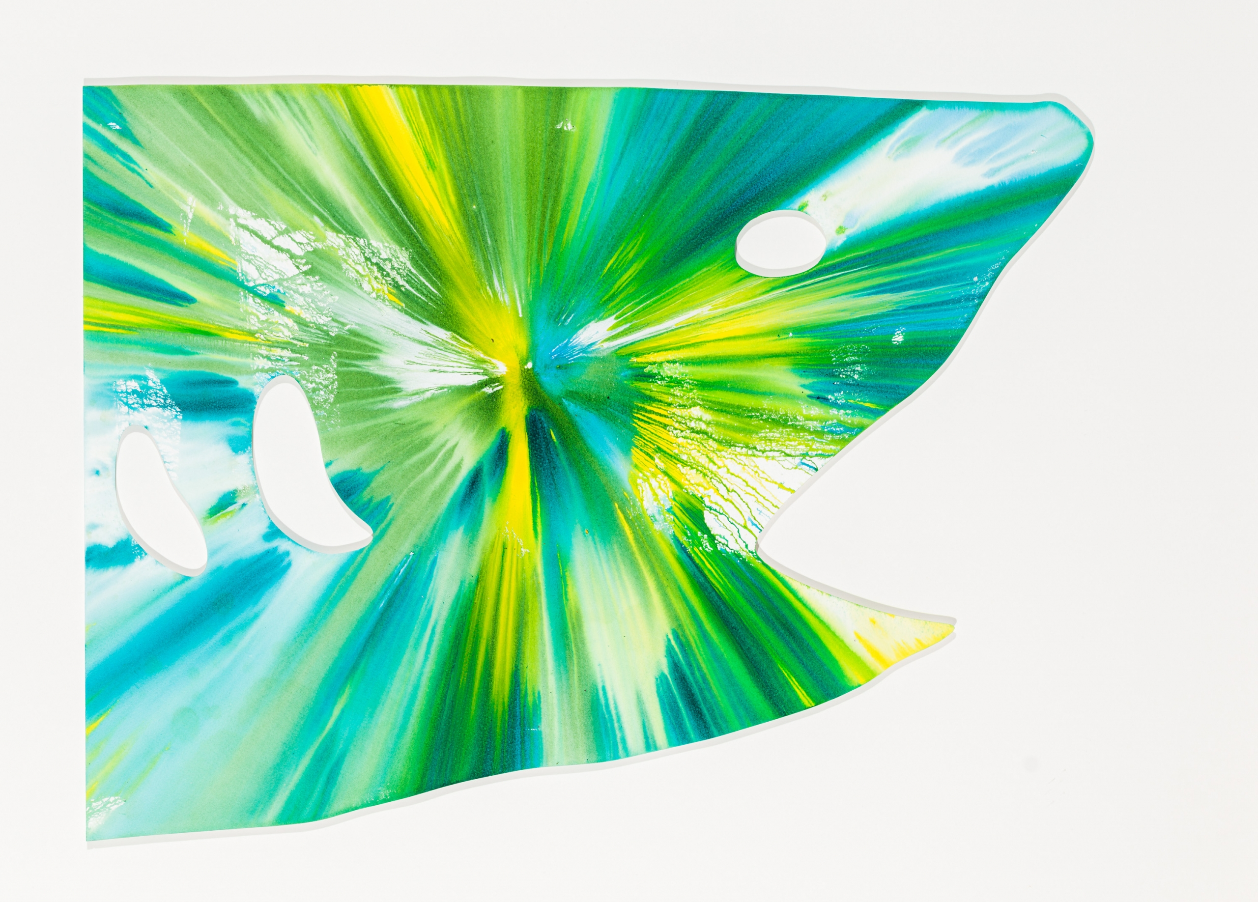 Damien Hirst, Shark Spin Painting