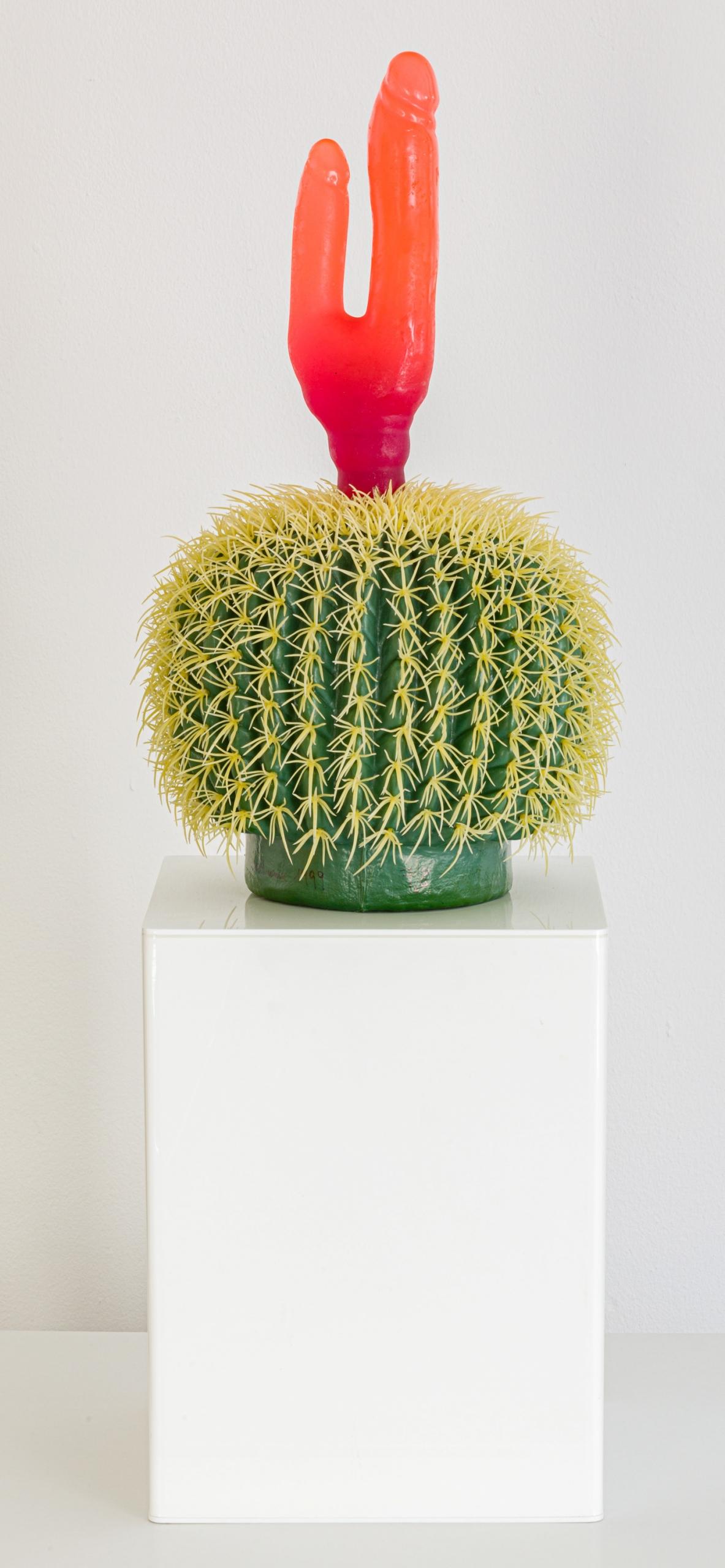 Renate Bertlmann, Desert (aus der Serie Kaktus mit Doppelpenis)