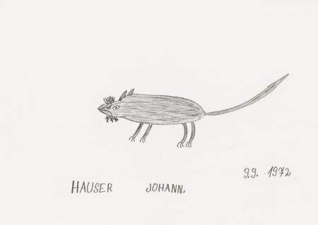 Johann Hauser, Ratte
