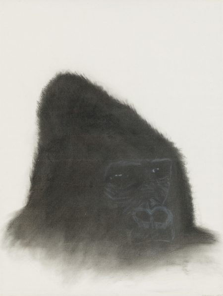Walter Navratil, Gorilla