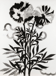 Franz Graf, Mother flower