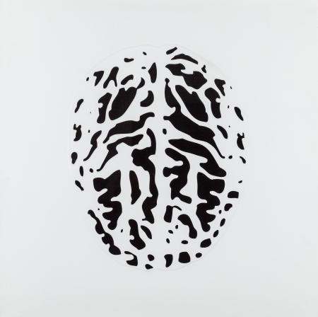 Peter Kogler, Gehirn
