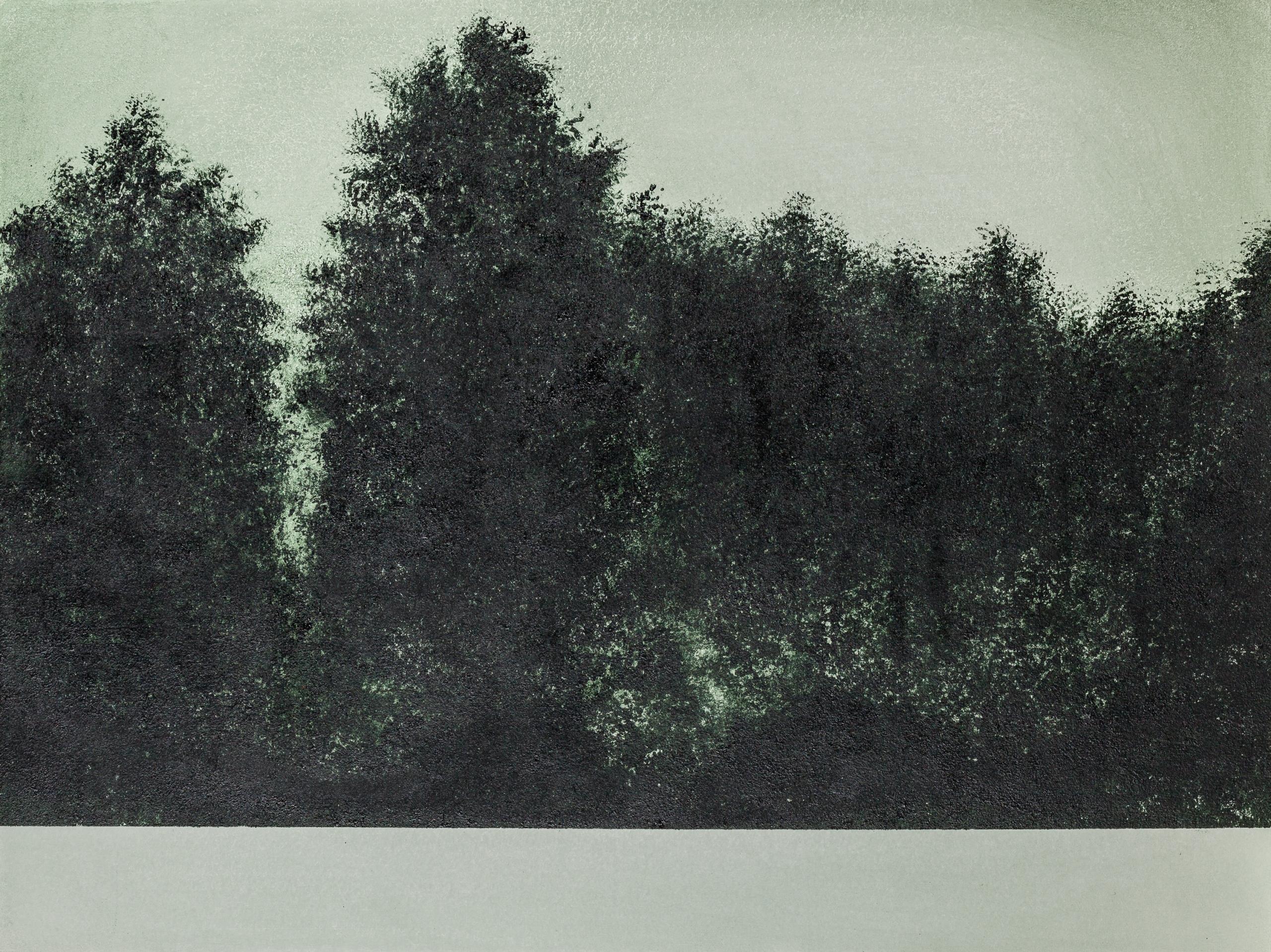 Bertram Hasenauer, Talus 12
