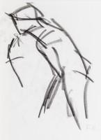"""Franz Grabmayr, Skizzenbuch """"Ballett Festival"""""""