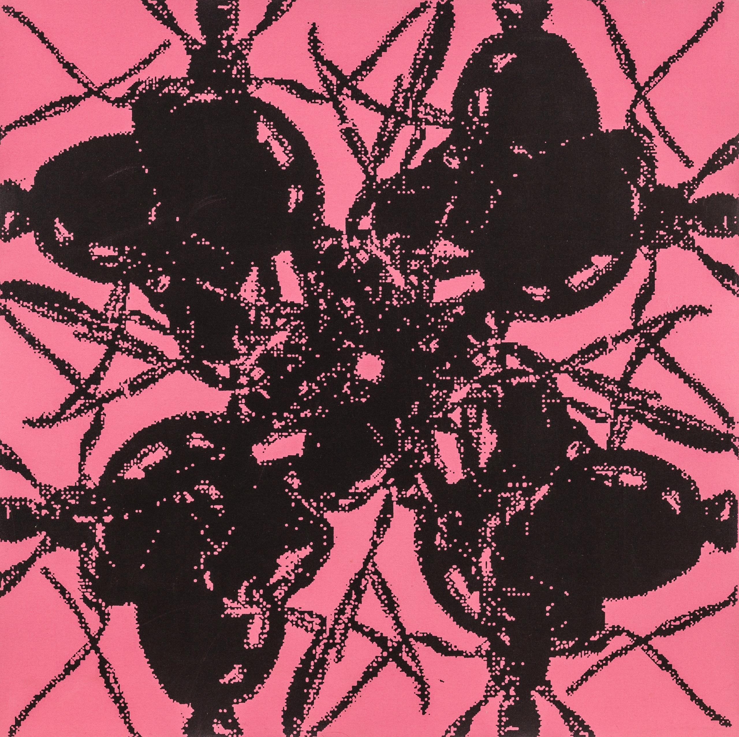 Peter Kogler, Ameisen